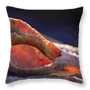 Shellwork Throw Pillow