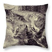 Sheltered Throw Pillow