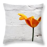 Seriously Orange - Sheltered Throw Pillow