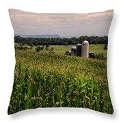 Shenandoah Corn Throw Pillow