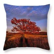 Shenandoah Tree Throw Pillow