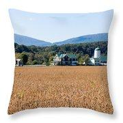 Shenandoah Valley Farmstead Throw Pillow