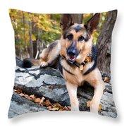 Shepherd In The Fall Throw Pillow