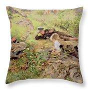 Shepherds Throw Pillow
