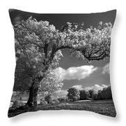 Shepton Tree Throw Pillow