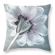 Sheradised Primula Throw Pillow by John Edwards
