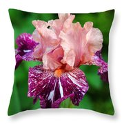 She's A Lady Throw Pillow