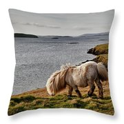Shetland Pony At Shore  Shetland Throw Pillow