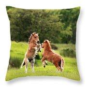 Shetland Pony's Throw Pillow
