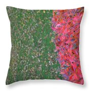 Shifting Into Winter Throw Pillow