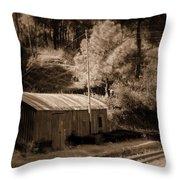 Shimla Rail Road Throw Pillow