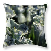 Shimmer In The Forest Of Dew Throw Pillow