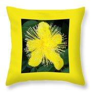 Shimmer Yellow Flower Throw Pillow