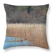 Shimmering Gold Grasslands Throw Pillow