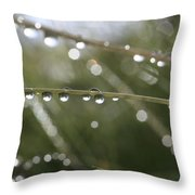 Shimmering Rain Drops In A Meadow Throw Pillow