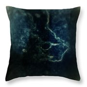 Shin Throw Pillow