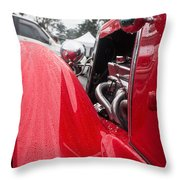 Shine In The Wet Throw Pillow