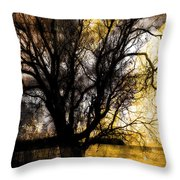 Shine In Twine  Throw Pillow