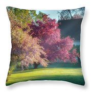 Shine The Light On Me Throw Pillow