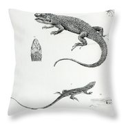Shingled Iguana Throw Pillow