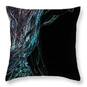 Shining Lady Throw Pillow by Jenny Rainbow