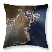 Shining The Light Throw Pillow