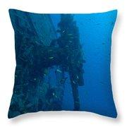 Small Artillery On A Ship Wreck Throw Pillow