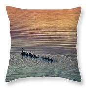 Shipshewana Lake Evening Throw Pillow
