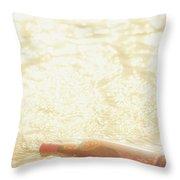 Shipwreck Love Affair Throw Pillow
