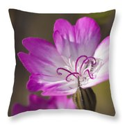 Shocking Pink Chenille Throw Pillow