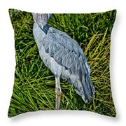 Shoebill Stork Throw Pillow