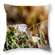 Shoo This Is Mine Throw Pillow