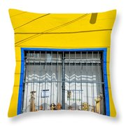 Shop Window - Mexico - Photograph By David Perry Lawrence Throw Pillow