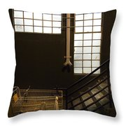 Shopping Cart Stairs At Window Throw Pillow