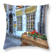Shops And Flower Boxes Throw Pillow