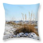 Shore And Ice Throw Pillow