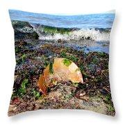 Shore Scene Throw Pillow