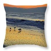 Shorebirds At Dawn Throw Pillow