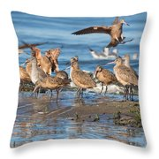 Shorebirds Flocking At Bodega Bay Throw Pillow