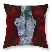 Shoreline Throw Pillow by Graham Dean