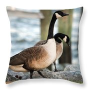Shoreline Stroll Throw Pillow