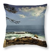 Shoreline View In Acadia National Park Throw Pillow