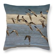 Short-billed Dowitchers Flying Throw Pillow