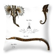 Short Dragonfish Throw Pillow