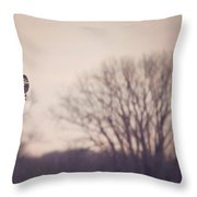 Short Eared Owl At Dusk Throw Pillow