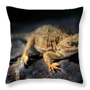 Short Horned Lizard Throw Pillow