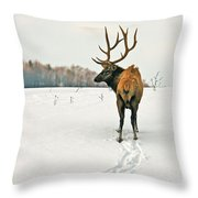 Shortest Distance Elk Throw Pillow