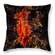 Shot Tomatoe Throw Pillow