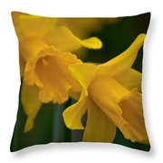 Shout Out Of Spring Throw Pillow