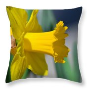 Shout Out To Spring Throw Pillow